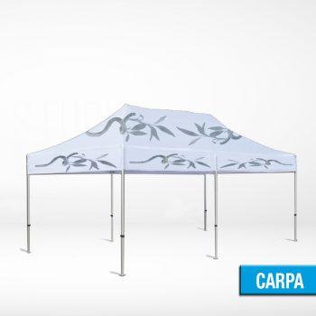 CARPA 3X6 METROS
